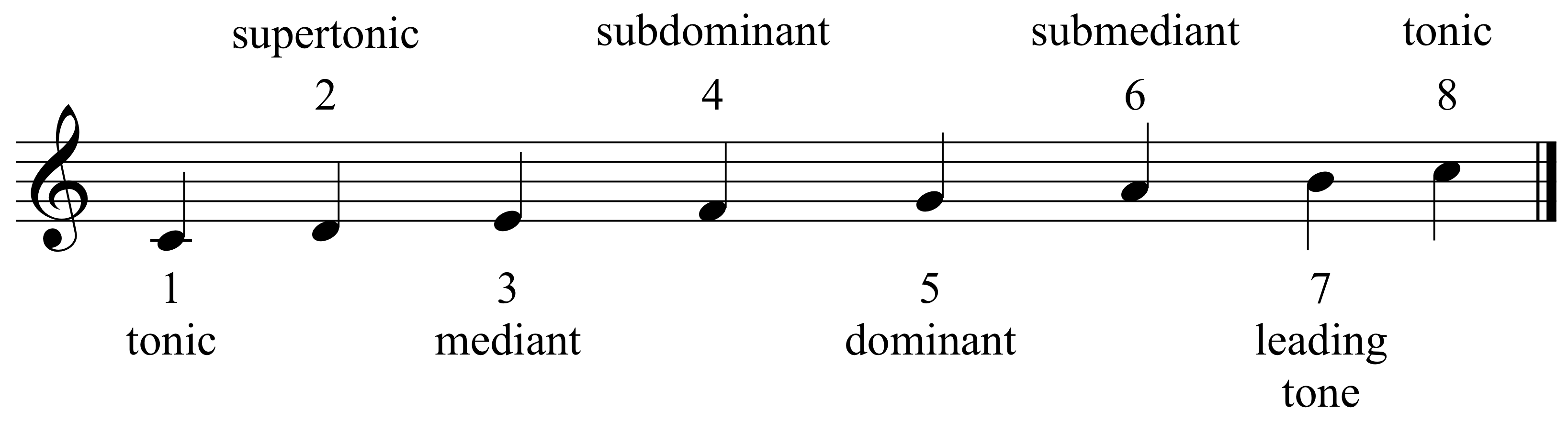 Degrees of the Scale   The Violin Den